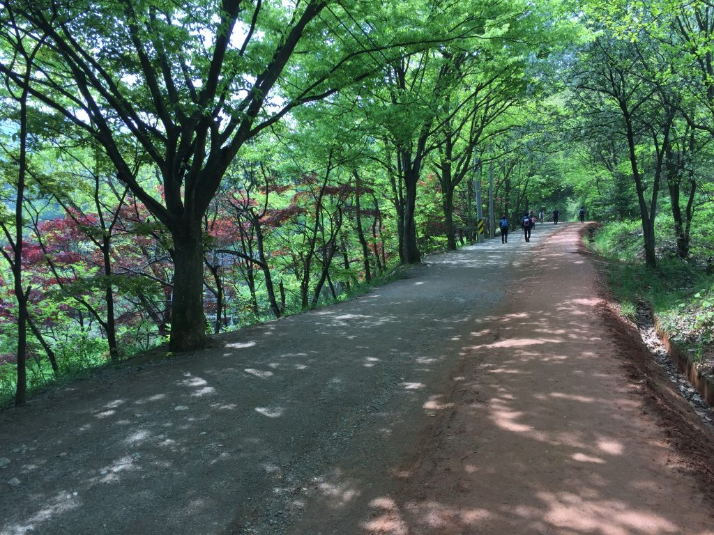 Gyejoksan Mountain Red Clay Trail